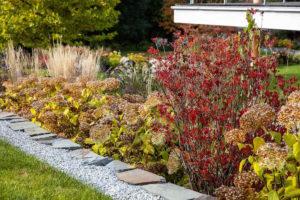 Podzimní záhon v zahradě
